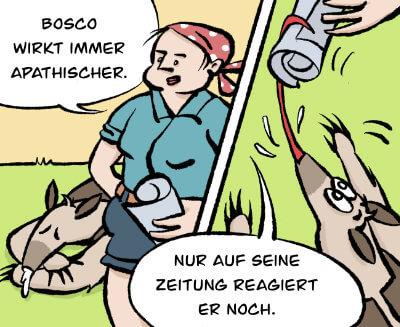 Bosco und Meisi Comic 3 Bild 1